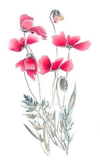 Brush painted poppies