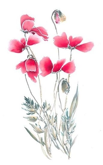 Brush painted poppies