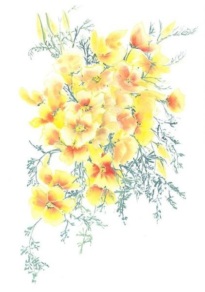 Brush painted yellow poppies